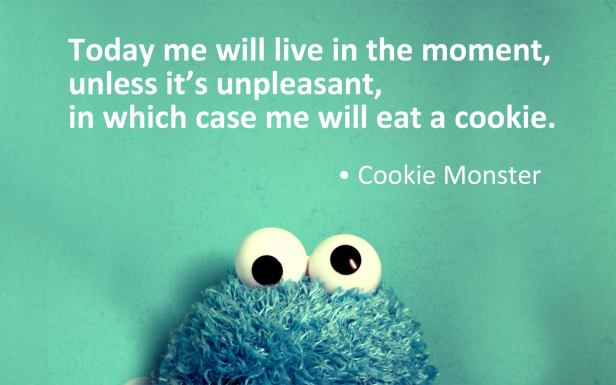 cookie-monster-wisdom.jpg